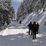excursión con raquetas de nieve2